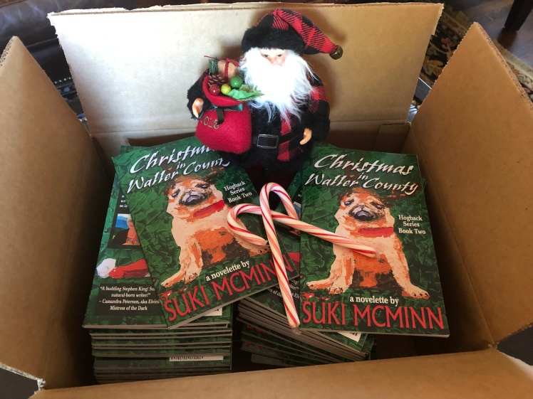 christmas in box of books